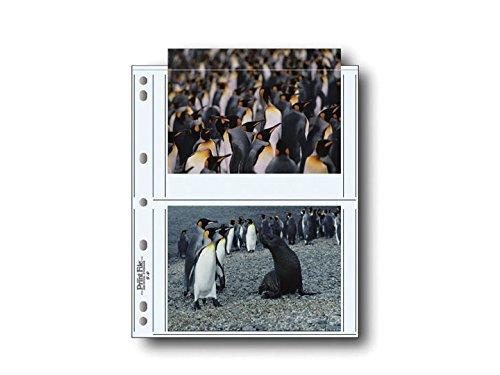 【高知インター店】 Print File 印刷ポストカード用アーカイブ保管ページ Print B004BZ5WOY 100枚パック – – 060–0644 B004BZ5WOY, アカギチョウ:b944ae4f --- a0267596.xsph.ru