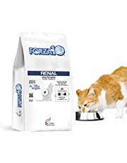 Forza10 Active Kidney Renal Diet Dry Cat Food for Adult Cats, Cat Food Dry for Heart and Kidney Problems, Wild Caught Anchovy Flavor
