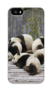iPhone 5S Cases & Covers -Little Pandas Sleeping Custom PC Hard Case Cover for iPhone 5/5S šC White