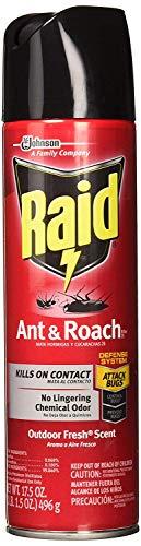 Raid Ant & Roach Killer Outdoor Fresh, 17.5 OZ (Pack - 1)