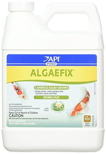 Image of API (2 Pack Pondcare Algaefix Alage Control, 32-Ounce