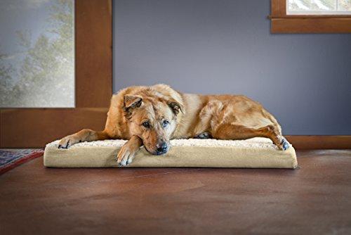 Best Large Dog Beds 16