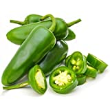 HATCHMATIC Seeds Package: Jalapeno Pepper Seeds 60 Heirloom. Same Day Shipping