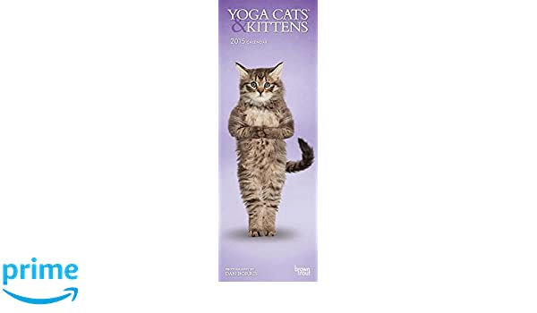 Yoga Cats & Kittens 2015 Slim: Amazon.es: BrownTrout ...