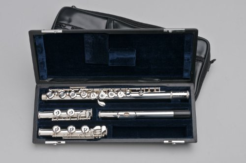 Tempest Agility Winds Flute Handmade Offset G Split E Mechanism Open Hole with Plugs 2 Feet Low C & Low B Foot Handcut Headjoint French Style Pointed Keys French Style Case Lined Case Cover 5 year Warranty