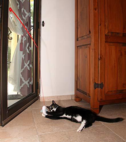 Hartz Cattraction Silver Vine & Catnip Cat Toys 8
