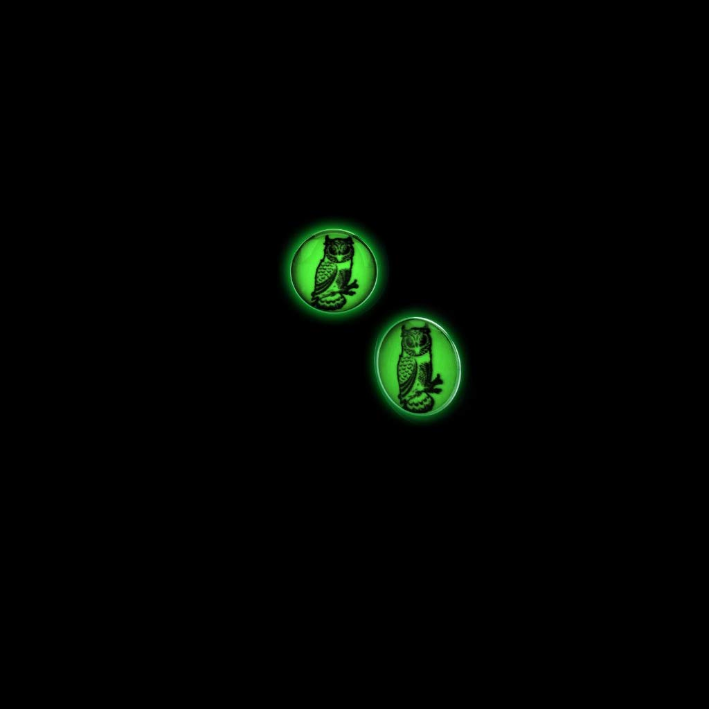 BodyJewelryOnline 18 Gauge Glow in The Dark Owl Ear Plugs Sold in Pairs!