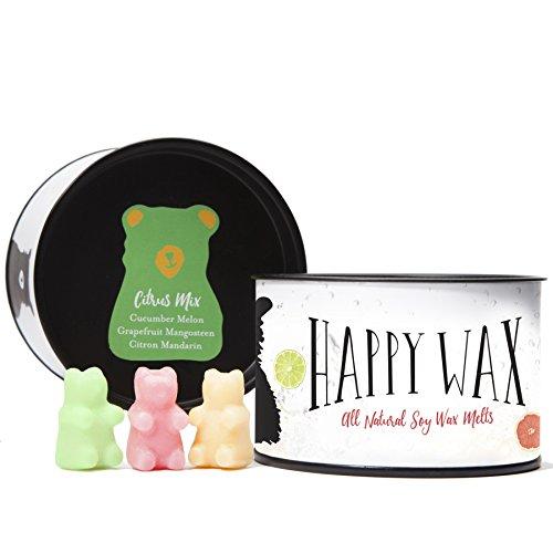 bear candle warmer - 2