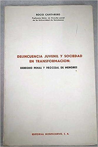 Delincuencia juvenil y sociedad en transformación: derecho penal y procesal de menores: Rocío Cantarero: 9788471112538: Amazon.com: Books