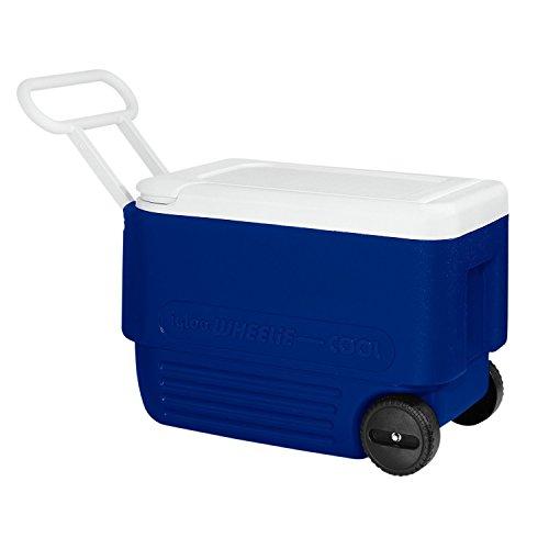 Igloo 38 Quart Wheelie Cooler (24 x 12.88 x 15.75)