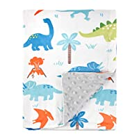 HOMRITAR Baby Blanket for Kids Super Soft Minky Blanket with Dotted Backing, Toddler Blanket with Dinosaurs Multicolor Printed 30 x 40 Inch (75x100cm)