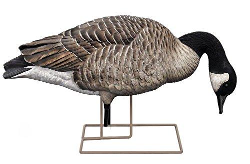 Avian-X Honker Feeder Full Body Goose Decoys 6 pack by Avian-X (Image #4)