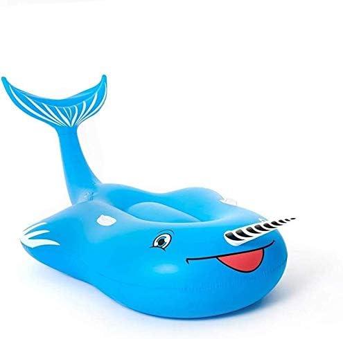 プール クジラ