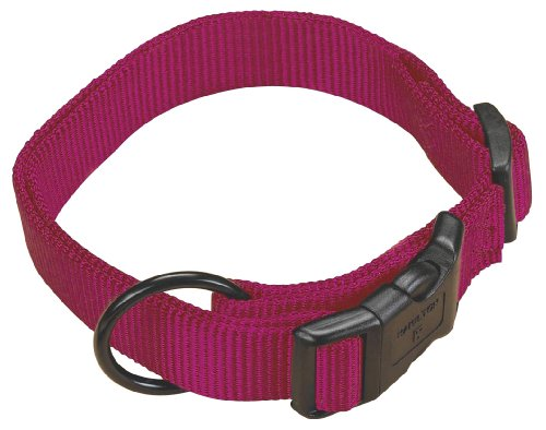 Hamilton 5/8″ Adjustable Dog Collar, adjusts from 12-18 inches, Wine, My Pet Supplies