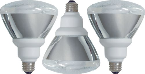 Fluorescent Outdoor Flood Light Bulbs - 5