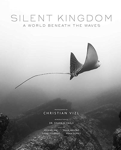 Silent Kingdom reveals the world beneath the waves in an ethereal collection of black-and-white underwater photography. Through stunning black-and-white images, award-winning photographer Christian Vizl uses a masterful control of light and shadow to...