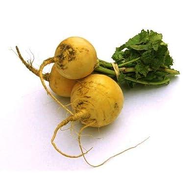 Golden Ball Turnip Seeds, 1000+ Premium Heirloom Seeds, ON Sale, (Isla's Garden Seeds), Non GMO, 90% Germination Rates, Highest Quality Seeds : Garden & Outdoor