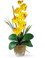 Nearly Natural 1016-GY Phalaenopsis Silk Orchid Flower Arrangement, Yellow