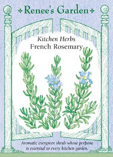 Rosemary - French Seeds