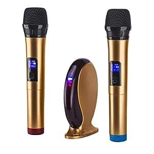 ggmallw 503 professional uhf wireless microphone system singing mixer karaoke. Black Bedroom Furniture Sets. Home Design Ideas
