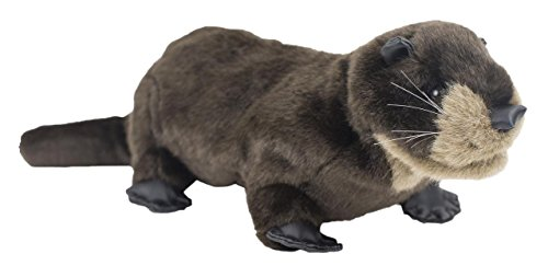 Eddy the Otter Puppet - Vbs 2018 Eddy the Otter Puppet - Vbs 2018 (Splash Canyon - God's Promise on Life's Wild Ride) (Otter Folkmanis Puppet)