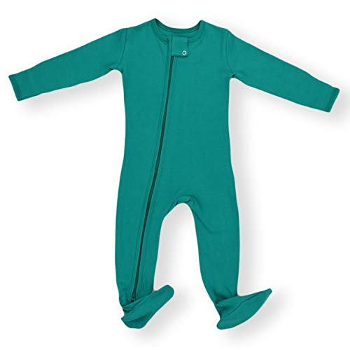 Dragonfly Cotton Pajama - Earthy Organic Baby Pajamas 2-Way Zipper Sleeper Boy Girl (9 Sizes: Preemie - 3T) 100% Organic Cotton (12 Months, Dragonfly)