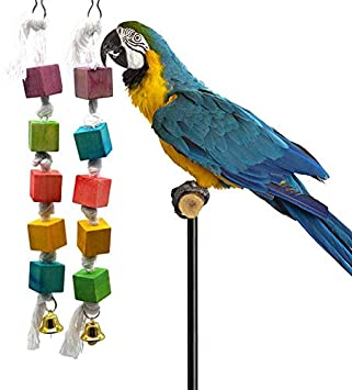 Bird Toys - Bird Chewing Toy Multicolored Wooden Blocks Attract Pet 39 S Attention Parrot Gnawed Wood String - Beads Bagels Leather Bells Hang Easter Sneakers Outdoor Shoes Pack Steel Co: Amazon.es: