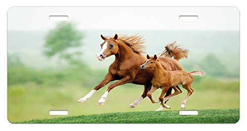 Lunarable Horse License Plate, Running Chestnut Horses Mare and Foal Meadow Scenic Summer Day Outdoors, High Gloss Aluminum Novelty Plate, 5.88 L X 11.88 W Inches, Pale Brown and - Chestnut Foal