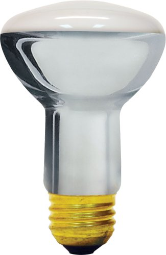 Halogen Flood Light Bulb Sizes - 7