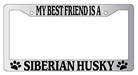 Chrome METAL License Plate Frame LIFE IS BETTER WITH MY SIBERIAN HUSKY 574