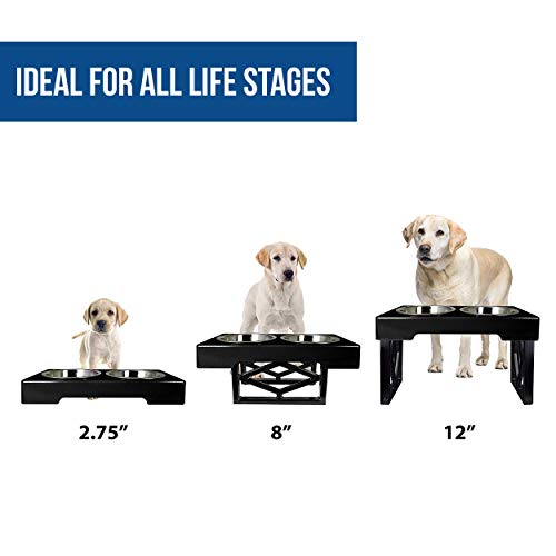 "Pet Zone Designer Diner Adjustable Elevated Dog Bowls - Adjusts to 3 Heights, 2.75"", 8"", 12'' (Raised Dog Dish with Double Stainless Steel Bowls) Black"