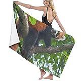 "Beach Bath Towel Red Panda Bear Climbing Tree Personalized Custom Women Men Quick Dry Lightweight Beach & Bath Blanket Great for Beach Trips, Pool, Swimming and Camping 31""x51"""