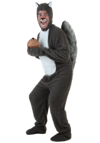 Squirrel Costumes For Adults (Fun Costumes Squirrel Costume Standard)