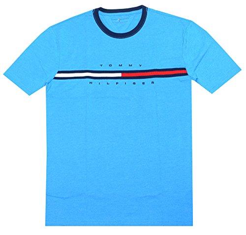 Tommy Hilfiger Men Classic Fit Big Logo T-Shirt (XS, Azure blue)