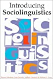 Introducing Sociolinguistics, Mesthrie, Rajend and Swann, Joan, 1556192061