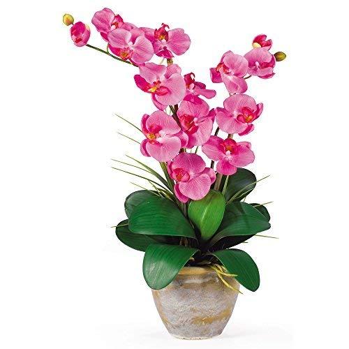 SKB Family Double Stem Phalaenopsis Silk Orchid Arrangement Dark Pink Floral Home Decor Elegance