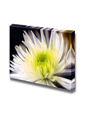 Closeup of White Chrysanthemums Flower Wall Decor