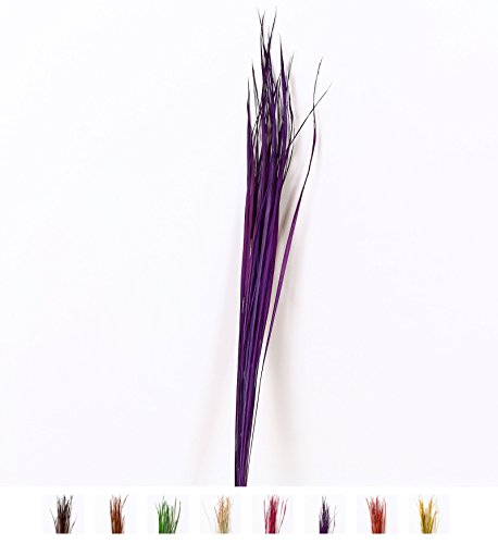 Dried colored natural grass bunch for floor vases decorative twig bunch, 0.4x47 inches, Lavender ()