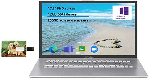 "Newest Flagship Asus VivoBook 17 Business Laptop 17.3"" FHD Display AMD Ryzen 3 3250U Processor 12GB RAM 256GB SSD USB-C HDMI SonicMaster for Business and Student Windows 10 Pro 