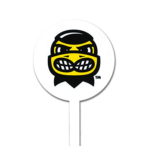 Authentic Street Signs NCAA Iowa Hawkeyes - Herkey - Garden Decor - Decorative Metal Yard Stake, Indoor/Outdoor