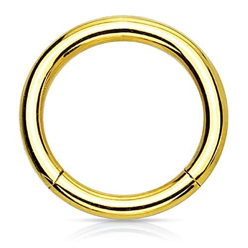 6mm Ball Earrings Titanium (BodyJ4You Piercing Ring Hinged Segment Clicker 18G Hoop 6mm Goldtone Steel Tragus Nose Daith Ear)