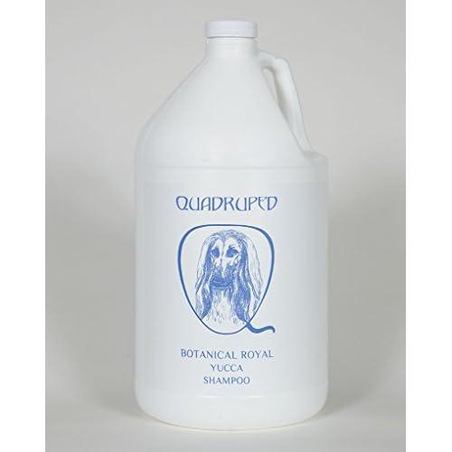 60%OFF Botanical Royal Yucca Concentrated Shampoo Gallon