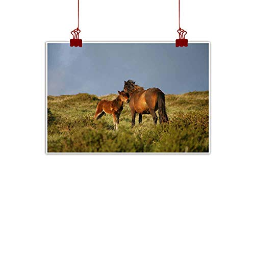 (duommhome Light Luxury American Oil Painting Mare with foal Canvas Wall Art 24
