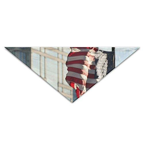 OLGCZM United States Flag Waving On Windy City Pet Dog Cat Puppy Bandana Triangle Head Scarfs Accessories ()