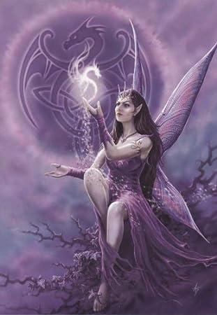 Draco faerie anne stokes greetings card fantasy gothic dragon draco faerie anne stokes greetings card fantasy gothic dragon and fairy m4hsunfo