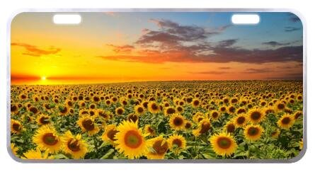 Beautiful Sunset Sunflower Scenery Novelty Car License Plate Cover Decorative Front Plate 6.1
