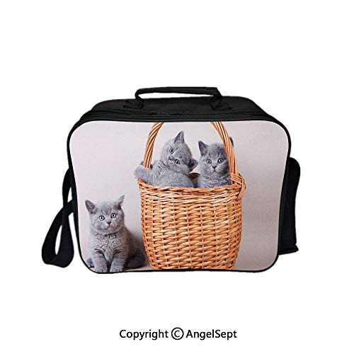 Multifunctional Lunch Bags for Women Wide Open,Three British Cats Kitties in Basket Adorable Baby Animals Fluffy Pets Decorative Grey Light Brown Dust 8.3inch,Lunch Box With Double Deck Cooler Tote B