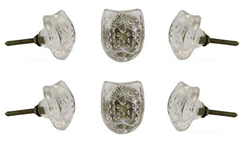 Owl Glass knob