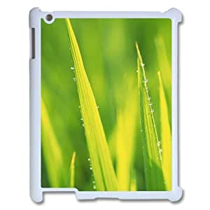 3D IPad 2,3,4 2D Case Funny Spring Grass, Grass Ipad Case for Boys [White]