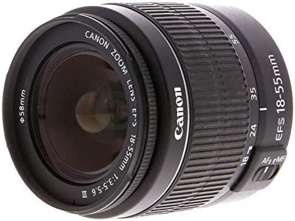 41PDsoOuNZL. AC  - Canon EOS 2000D (Rebel T7) DSLR Camera w/Canon EF-S 18-55mm F/3.5-5.6 Zoom Lens + Case + 128GB Memory (28pc Bundle)
